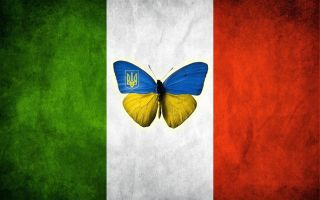 Ukrainian butterfly from Italy